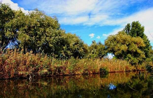 На Кубани появились еще две особо охраняемые природные территории