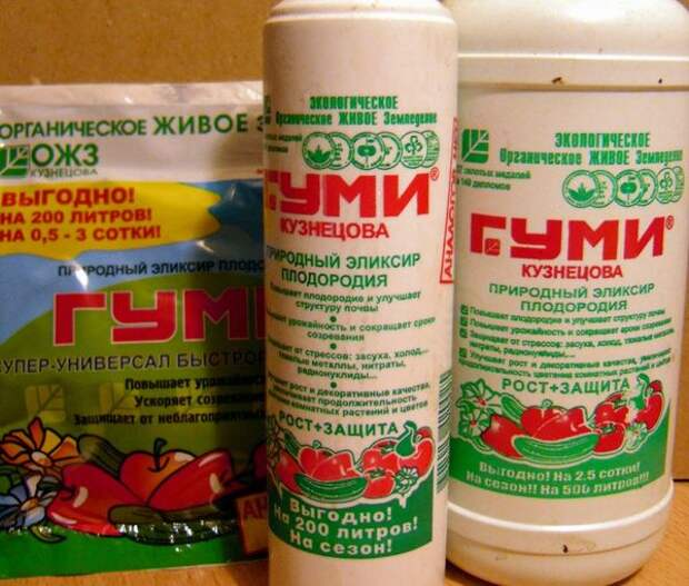 Препараты Гуми