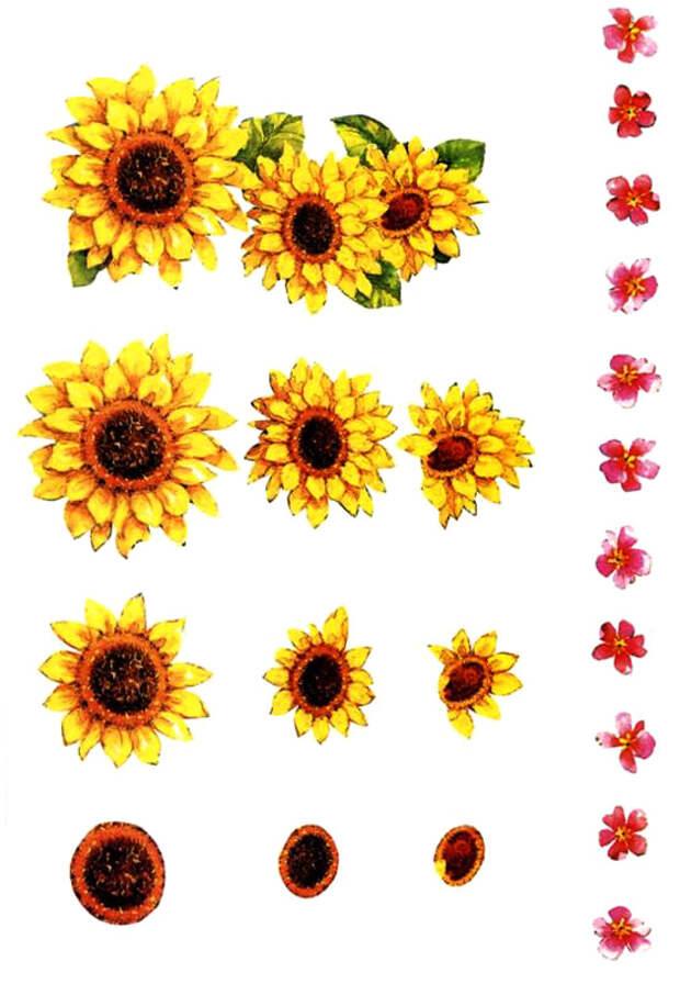 Элементы для композиции цветы