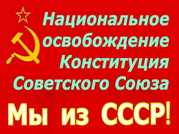 Национально-освободительное движение Советского Союза
