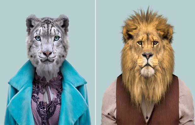 Стиляги: Экзотические животные, которых фотограф одел по последней моде