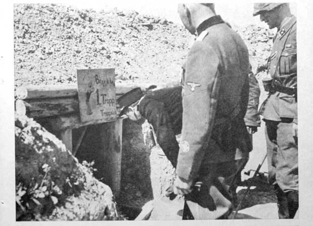 Норвежцы под Ленинградом.