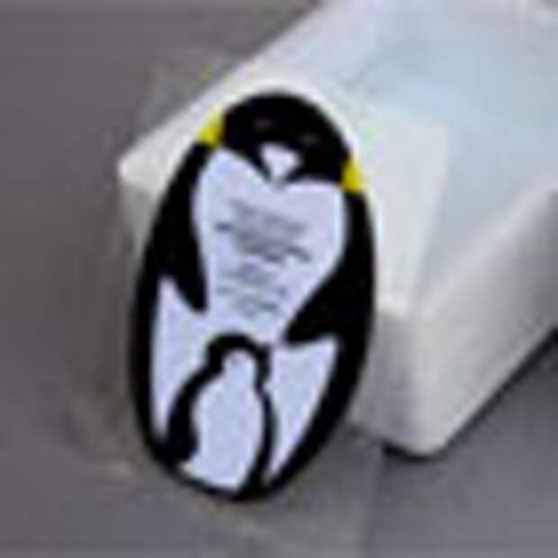 Айда к пингвинам!