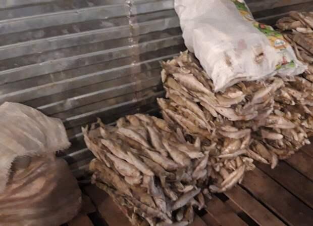 Более тонны опасной рыбы изъяли на предприятии в Сарапуле