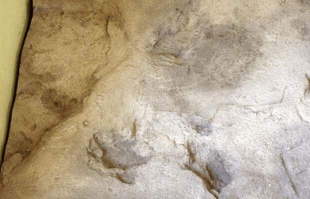 Загадочные следы стоп: отпечатки Евы.