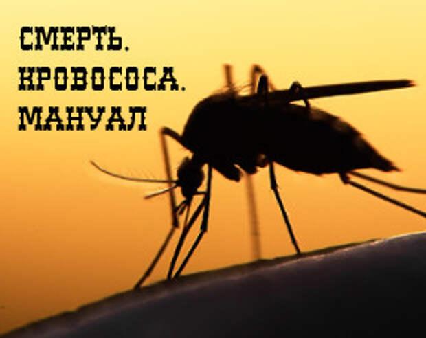 Лайфхак: 10 необычных способов избавления от комаров