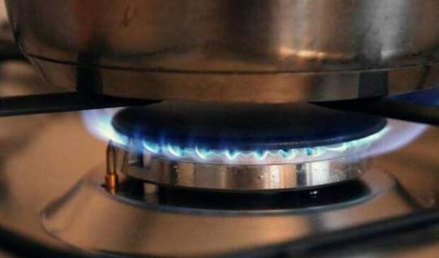 ЕРобратится кпрезиденту спросьбой газифицировать домовладения бесплатно