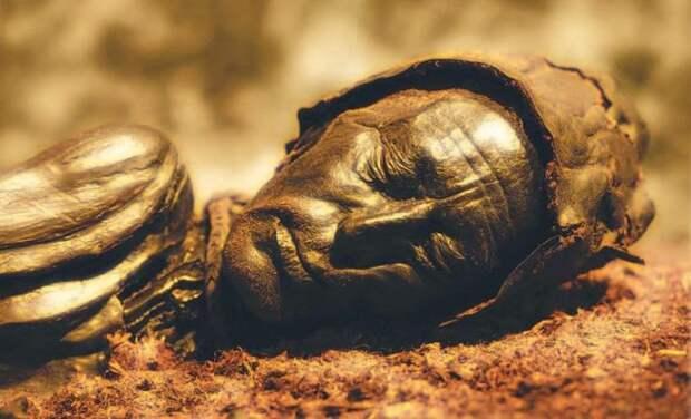 Мумия *человека из Толлунда*