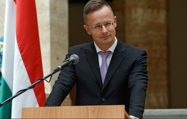 """Есть дела важнее Навального: МИД Венгрии жестко осадил """"лицемеров"""" из Евросоюза"""
