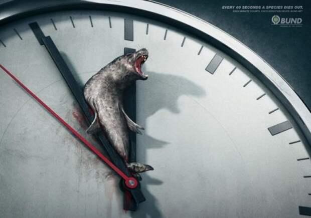 Яркие примеры отличной социальной рекламы (13 фото)