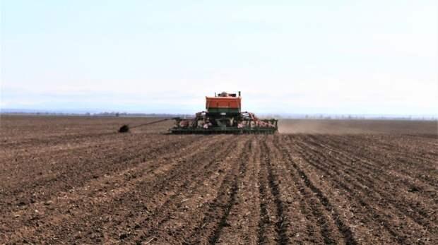 Андрей Рюмшин: Крымские аграрии приступили к севу кукурузы