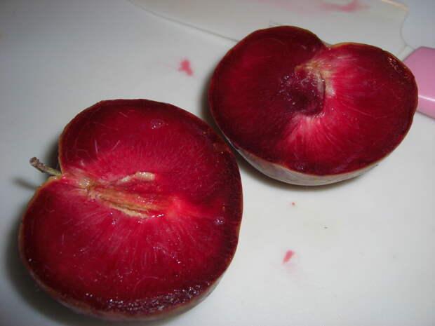 Слива + абрикос = плуот