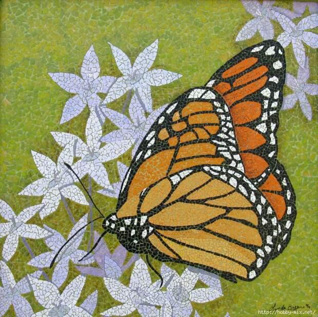 Monarch (700x698, 580Kb)