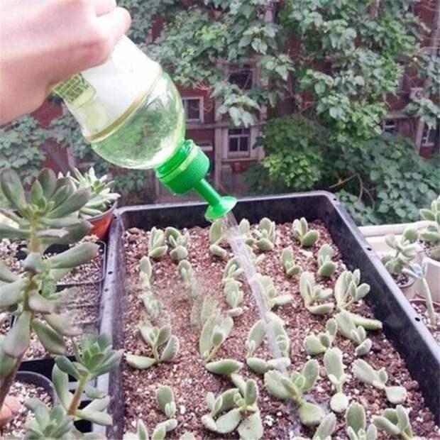 насадка на бутылку для полива