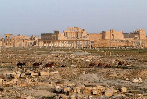 С помощью российских специалистов сирийские памятники будут восстановлены