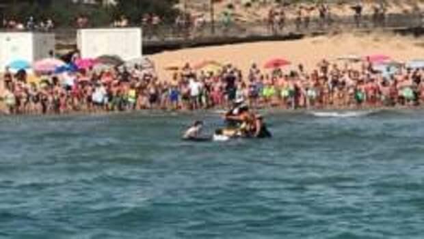 На пляже в Торревьехе спасли запутавшегося в сети ската