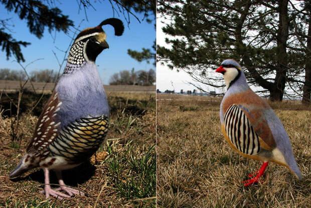 Реалистичные звери и птицы из войлока, творчество Kiyoshi Mino
