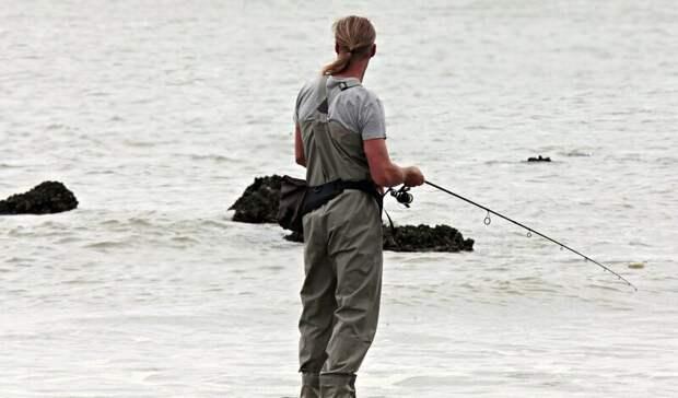 Уобитающей вРостовской области рыбы нашли опасные для человека болезни в2021 году