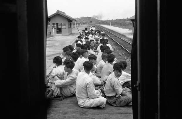 k04 0717 46 впечатляющих снимков Корейской войны