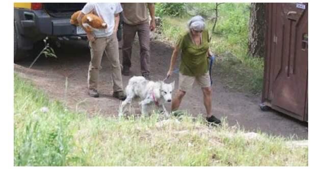 Истощенный волк вышел за помощью к людям, а они начали его прогонять . Но нашлись неравнодушные люди