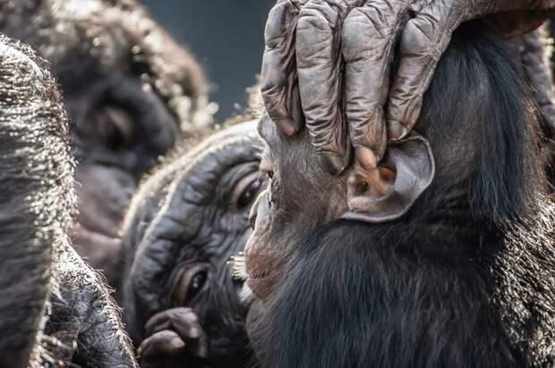 NatGeoTraveler20 Фотоконкурс от журнала National Geographic Traveler 2013 (Часть 2)