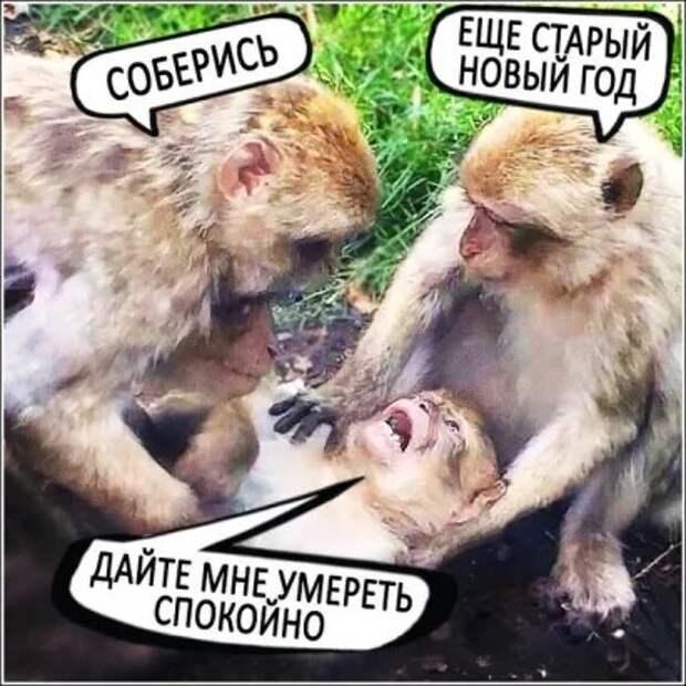 Медсестра делает Вовочке болезненный укол. — Потерпи...