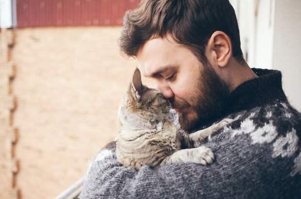 К алкоголику вместо «белки» пришел кот, который оказался его ангелом-хранителем