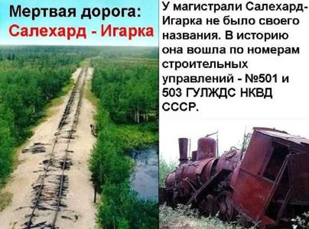 Загадка волховского плаща Сталина