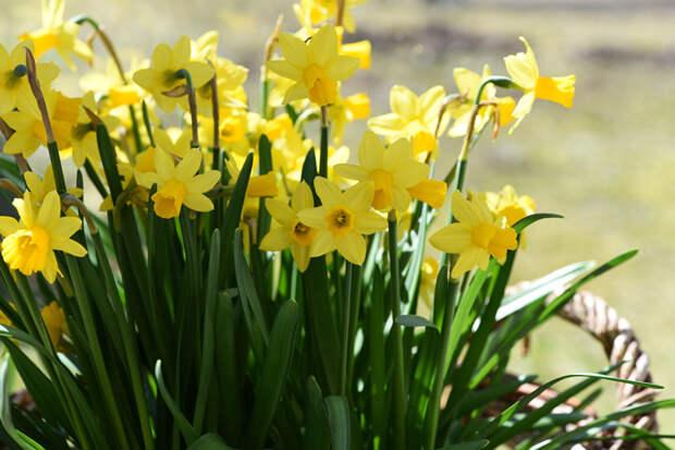 31 марта, весна-зима