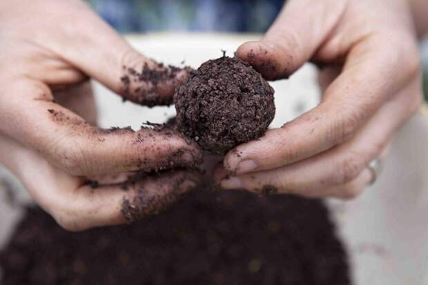 Партизанское садоводство: отличный метод для оригинальной клумбы