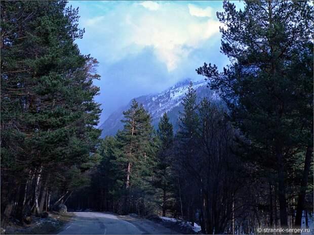 Баксанское ущелье дорога сосны горы