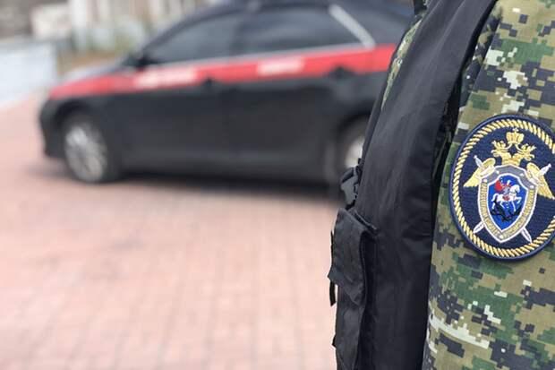 СК задержал подозреваемого в причинении смертельных травм министру Амурской области
