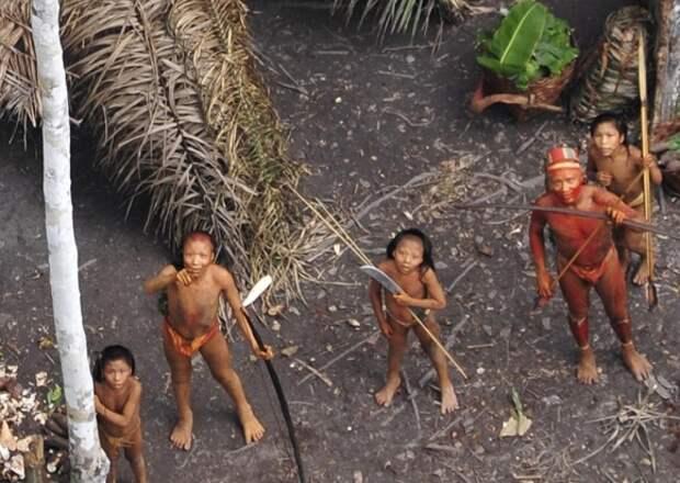 Личинки на завтрак и туканы на обед: как живут дикие племена, которые до сих пор существуют на планете