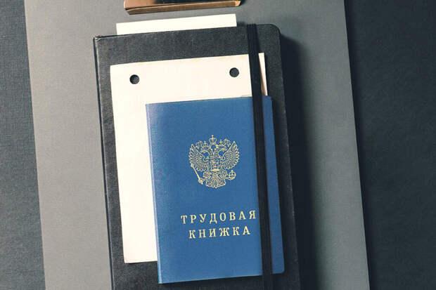 Трудовые книжки нового образца начнут использовать в России