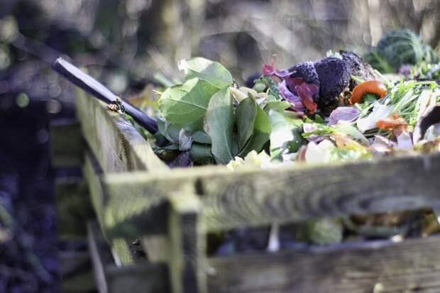 Уже несколько лет подряд собираю отходы для огорода. Зачем мне помойка на балконе?