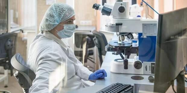 Частные клиники Москвы включились в борьбу с коронавирусом. Фото: mos.ru