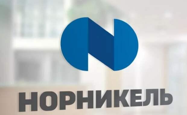 """""""Норникель"""" получил требование возместить $7 млн за вред животным из-за аварии на ТЭЦ"""