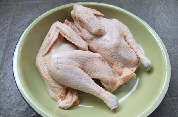 Курица испорчена: 5 самых частых ошибок