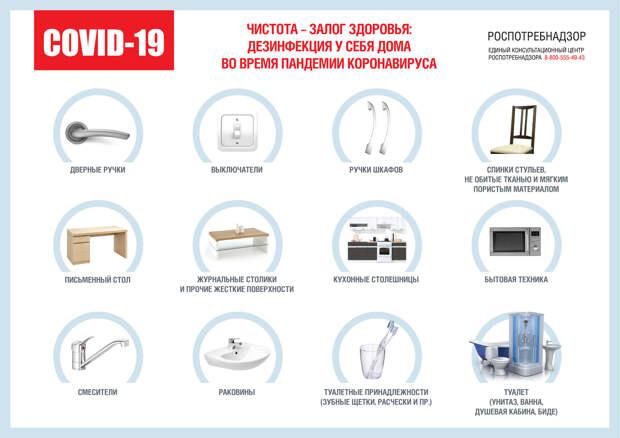 Коронавирус не пройдет: Роспотребнадзор дал россиянам 12 советов о соблюдении чистоты дома