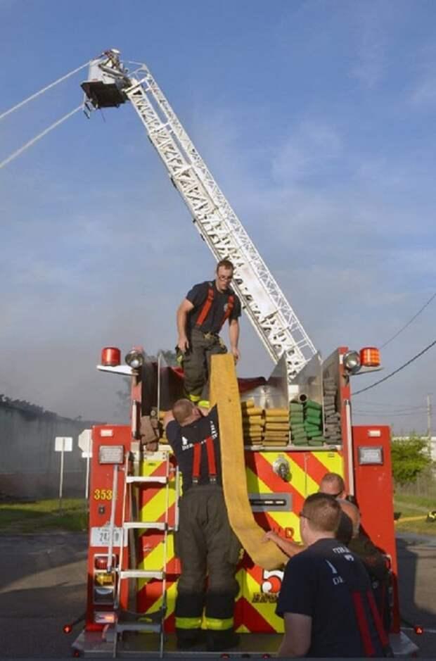 «А зачем спасать енотов?» — спросил кто-то, пока пожарные помогали двум зверькам выбраться из горящего здания