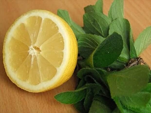 Ароматное варенье из мяты и лимона. Рецепт — как сделать варенье мятное домашнее.