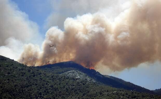Кипр просит международной помощи из-за сильных лесных пожаров