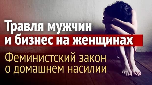 Лариса Павлова: Законопроект о семейно-бытовом насилии-акт о поражении в правах