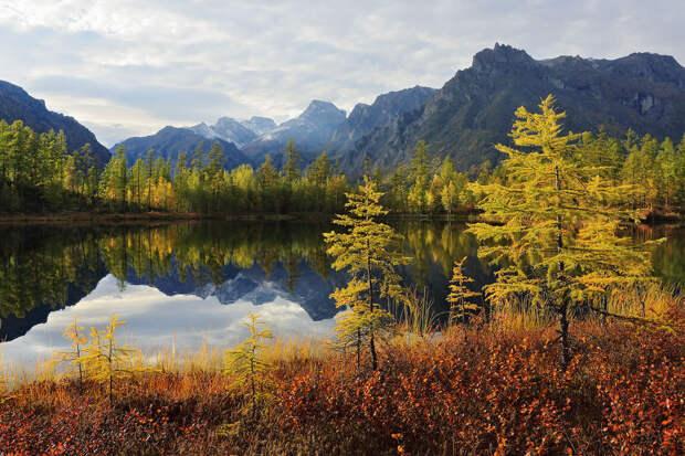 14 невероятных фотографий природы и советы по съемки
