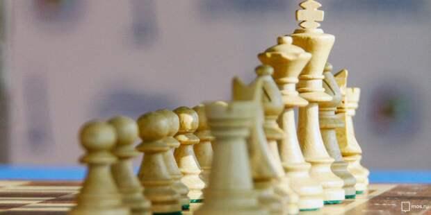 Шахматы. Фото: mos.ru