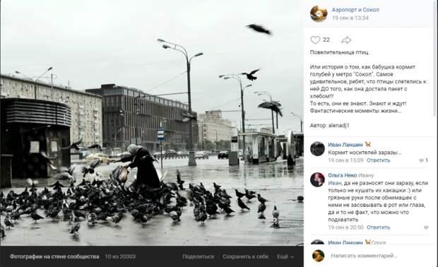 Фото дня: Повелительница голубей