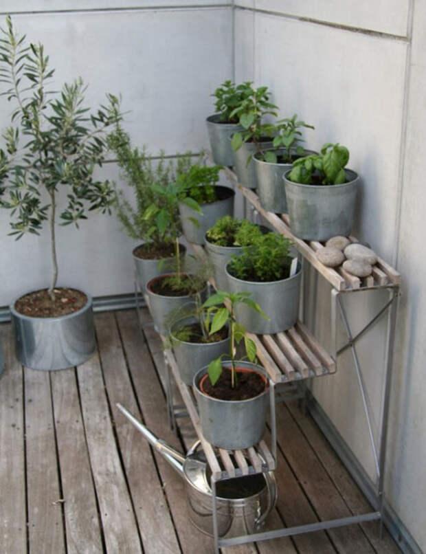 herb-garden-inspirations28-500x650 (500x650, 232Kb)