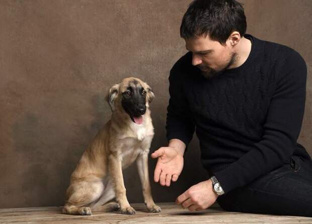 Данила Козловский подобрал в Грузии щенка