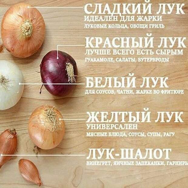 Виды лука для разных блюд