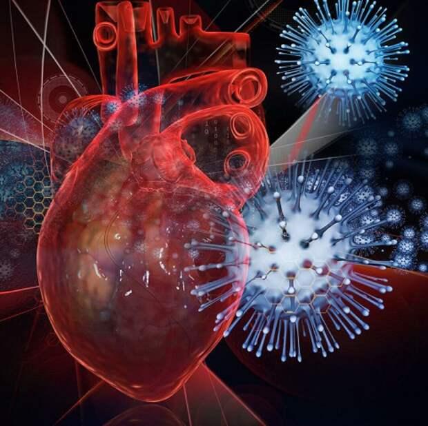 Хроническая сердечная недостаточность и COVID-19: прививка необходима.